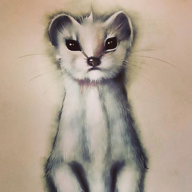 Sketching a little stoat!